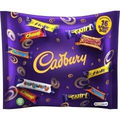 Cadbury Family Treatsize Bag 222g